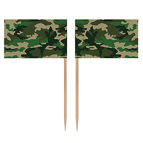 Picks - Camoflage