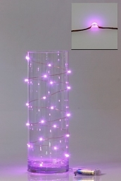 Led Battery Seed Light 2M L/Pink
